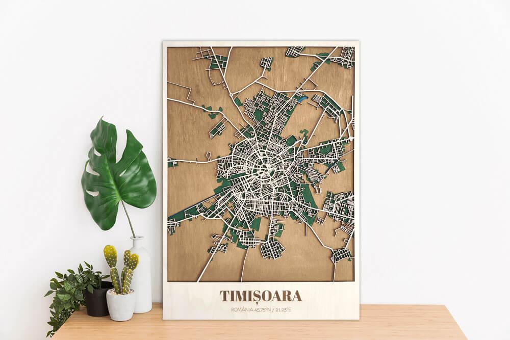 Harta-Timisoara-Lemn